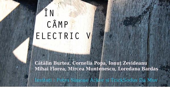 """""""În câmp electric"""" a ajuns la a cincea ediție"""