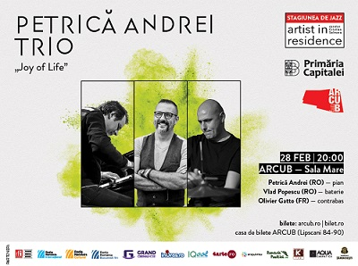 Petrică Andrei Trio cântă la Artist in Residence pe 28 februarie