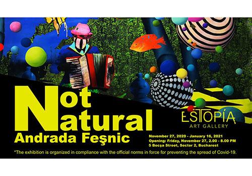 """Expoziție de pictură: """"Not Natural"""" de Andrada Feșnic"""