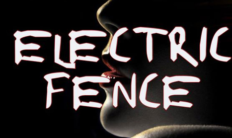 Electric Fence concerteaza in weekend la Campina