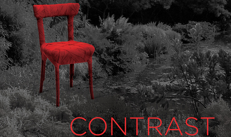 "Expozitie de arta contemporana: ""Contrast"""