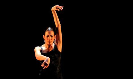Spectacol de flamenco la TNB