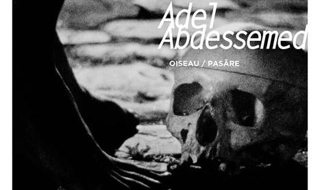 """Expozitie Adel Abdessemed: """"Oiseau/Pasare"""""""