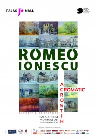 """Expozitia """"Acrostih tematic"""" semnata Romeo Ionescu"""