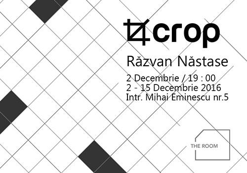 """Expozitie la The Room: """"Crop"""" de Razvan Nastase"""