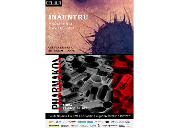 Celula de artă în martie: concert și expoziții