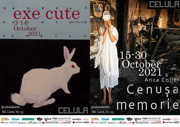 Celula de artă: expozițiile lunii octombrie
